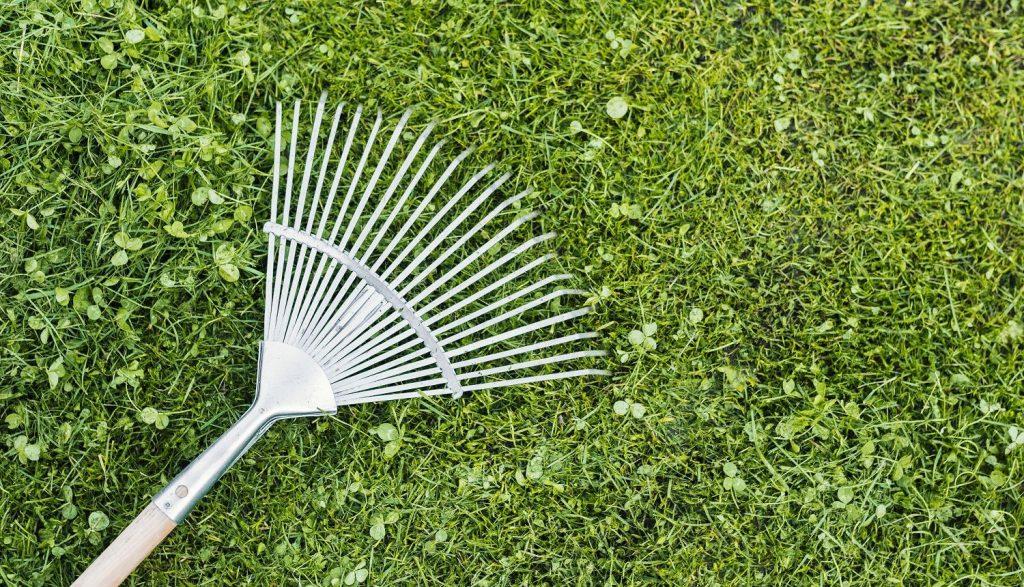 use pine rake